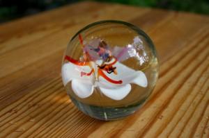 Fin gammel brevvægt i glas med blomst og bier inden i.