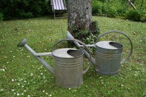 Zink vandkander med tud ca. 10 L.